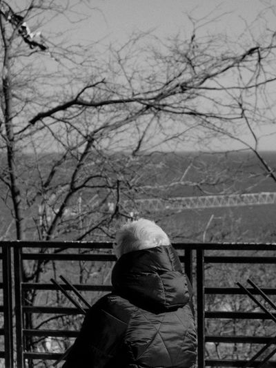Man standing by railing against bare trees during winter