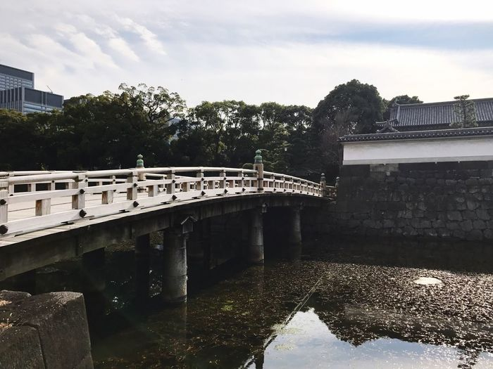 Time bridge Built Structure Architecture Tree Bridge - Man Made Structure Connection Water Building Exterior Sky Growth Outdoors Day River No People Hydroelectric Power Nature Reservoir