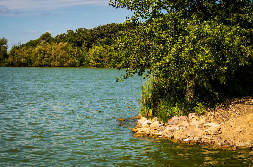 Rocky Beach Beauty In Nature Day Green Color Growth Lake Nature No People Non-urban Scene Outdoors Plant Scenics - Nature Sky Tranquil Scene Tranquility Tree Water Waterfront
