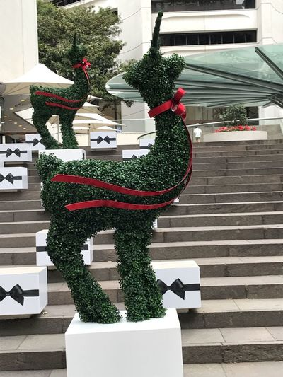 Green Color Reindeer Plant Christmas Tree Architecture Nature Building Exterior Built Structure Day No People Christmas Decoration Decoration christmas tree Celebration Representation Holiday City