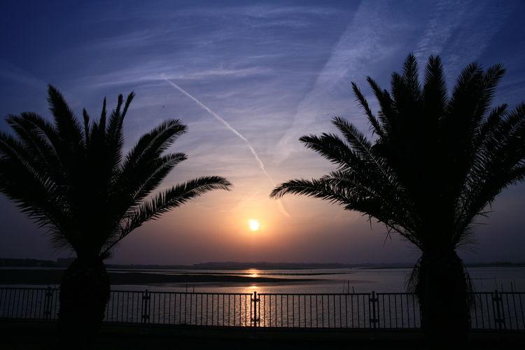 日没 浜名湖 夕焼け 夕陽 EOS Canon Eos5d キャノン Tamron Oldlens キャノン