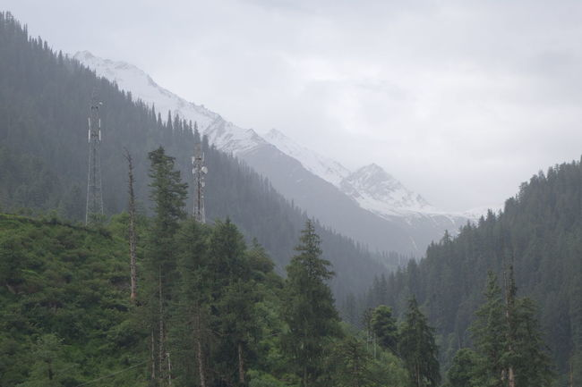 Beauty In Nature Environment Forest Kullu Landscape Mountain Mountain Peak Nature Non-urban Scene Outdoors Pine Tree Scenics - Nature Snow Covered Telecommunications Equipment Tranquil Scene Tranquility