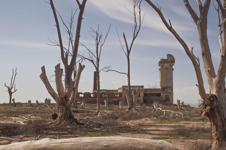 Abandoned Ciudad Abandonada De Epecu Ciudad Fantasma Destrucción Ecológi Epe Frígorifico De Salamone Frígorifico De Salo Provincia De Buenos Aires Tree árboles Muer