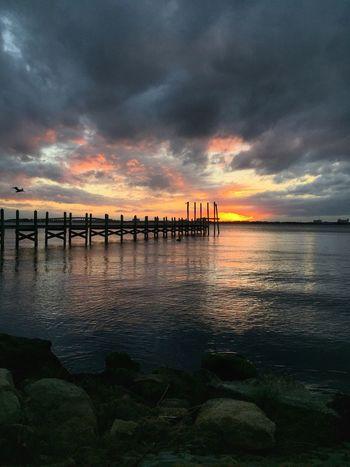 Pelican sunset Vincent Beneveno Sunset Park Indialantic, FL Sunset Scenics Reflection Tranquility Dramatic Sky Idyllic Indian River Lagoon Indian River Lagoon Sunset Tranquil Scene Docks Pelican In Flight