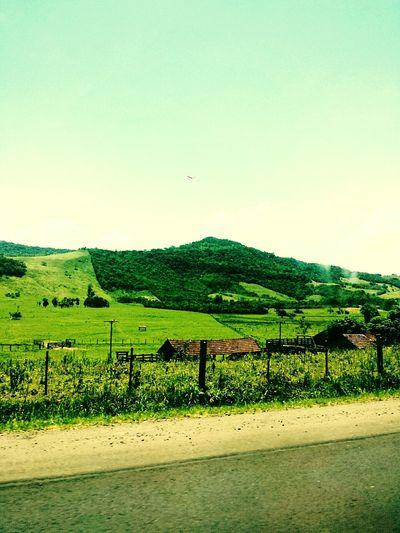 Green Espetacular Morro maravilhoso