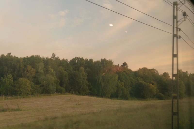 Sweden Traveling By Train Beauty In Nature Cable Day Electricity  Field From A Train Window Grass Growth Landscape Nature No People On The Road Outdoors Power Supply Scenics Sky Sunset Technology Train Tranquil Scene Tranquility Tree