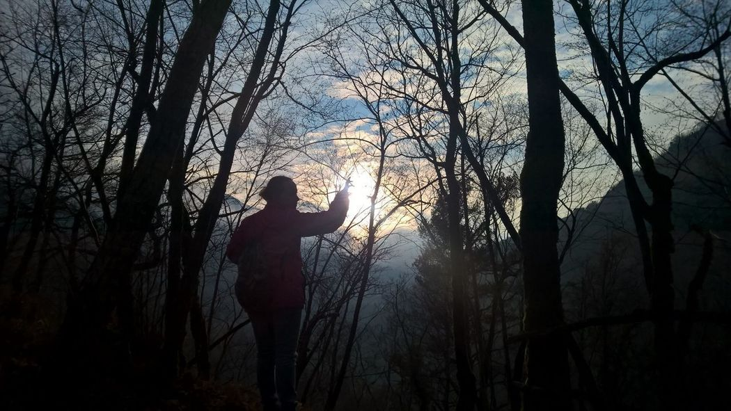 Catching fire Shadow Panorama Catching The Sun Tree Silhouette Plant Real People Forest Tree Trunk Trunk One Person Land Sunset Outdoors Nature Beauty In Nature