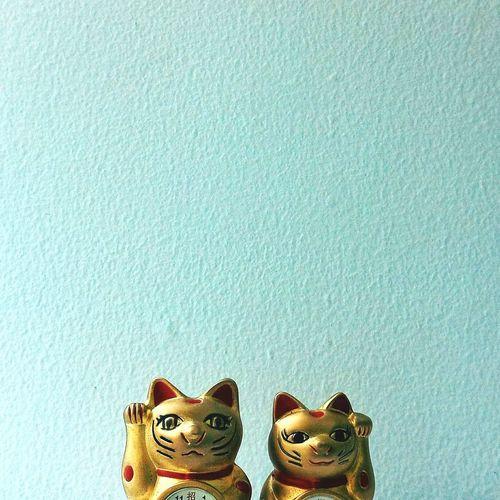 Manekineko Maneki-neko Fortune Cat Zenfone2 Zenfone Photography EyeEm Gallery Cat