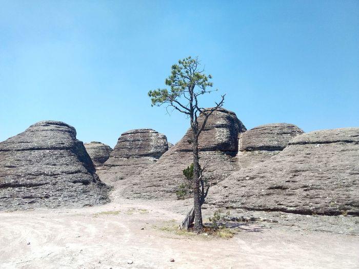Jardín de Priedras Stone Stones Piedra Piedras Jardindepiedras Mexiquillo DurangoMX Estoesmexico Desert Clear Sky Sky