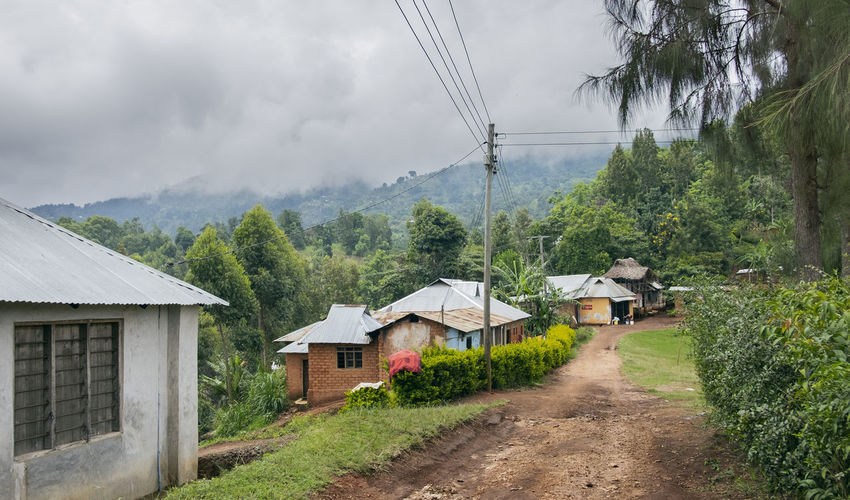 #Africa #africa #landscape #africa #streetphotography #africanlife #fujifilm #houses #lushoto #tanzania Landscape Road Rural Scene