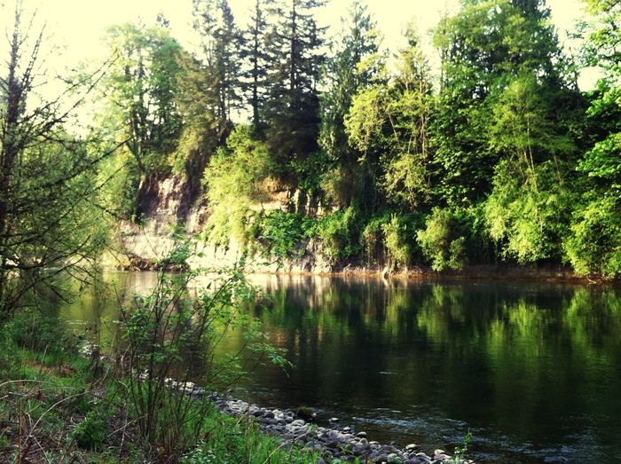 Clackamas River Oregon Morning Light water Waterscape Watershed
