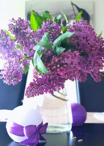 Spring Into Spring Springfeeling  Decor Interior Design Flowers Violet By Motorola Background Wallpaper Colors Gettyimages