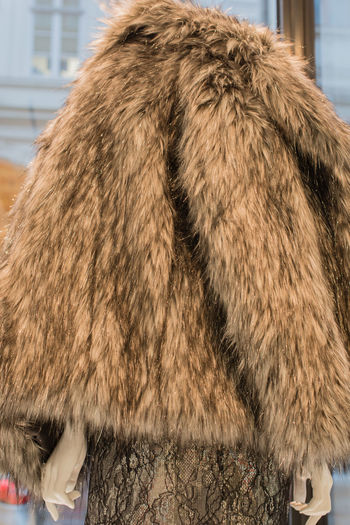 Fur jacket for sale in Winter Sale Boutique Business Department Store Fashion Fleecily Textiles Winter Woman Women's Outfitters Clothes Clothing Fashionably Fur Fur Jacket Fur Vest Jacket Luxury Mink Retail Trade Sales Shop Softy Warmly Winter Sale Women's Fashion