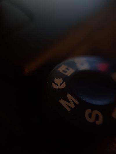 Macro Camera Macro Photography Lowlight Maximum Closeness