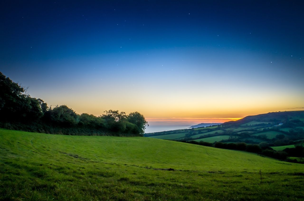 beauty in nature, nature, scenics, tranquil scene, green color, tranquility, field, landscape, grass, no people, idyllic, sky, outdoors, blue, rural scene, growth, star - space, mountain, agriculture, tree, night, clear sky, galaxy, astronomy