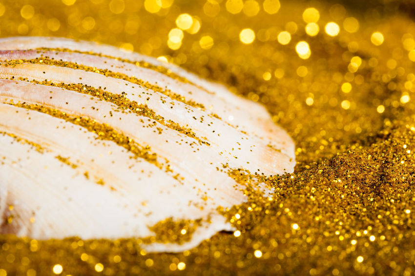 Glitter Gold Holiday Beach Close Up Close-up Detail Freshness Luxury Macro Mussel No People Sand Selective Focus Shell Shiny Still Life Symbol Vacation Wealth