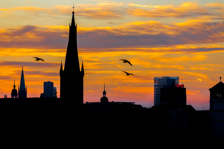 Düsseldorf, Germany Deutschland Düsseldorf Gegenlicht Lambertus Kirche Möwe NRW Sonnenaufgang Architecture Bird Built Structure City Cityscape Germany Orange Color Seagull Silhouette Sky Spread Wings Sunrise Sunset
