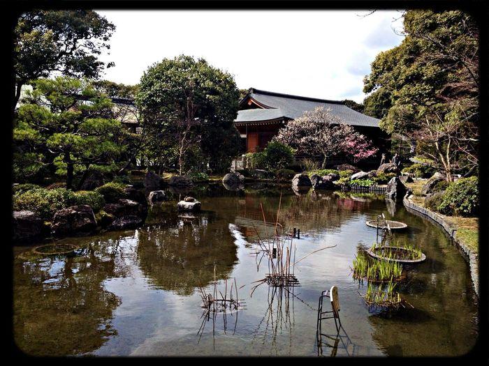 城南宮 神苑「平安の庭」 Garden The Purist (no Edit, No Filter) Taking Photos IPhoneography