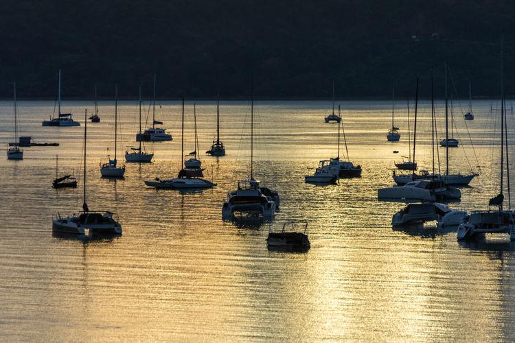 High angle view of sailboats moored in marina