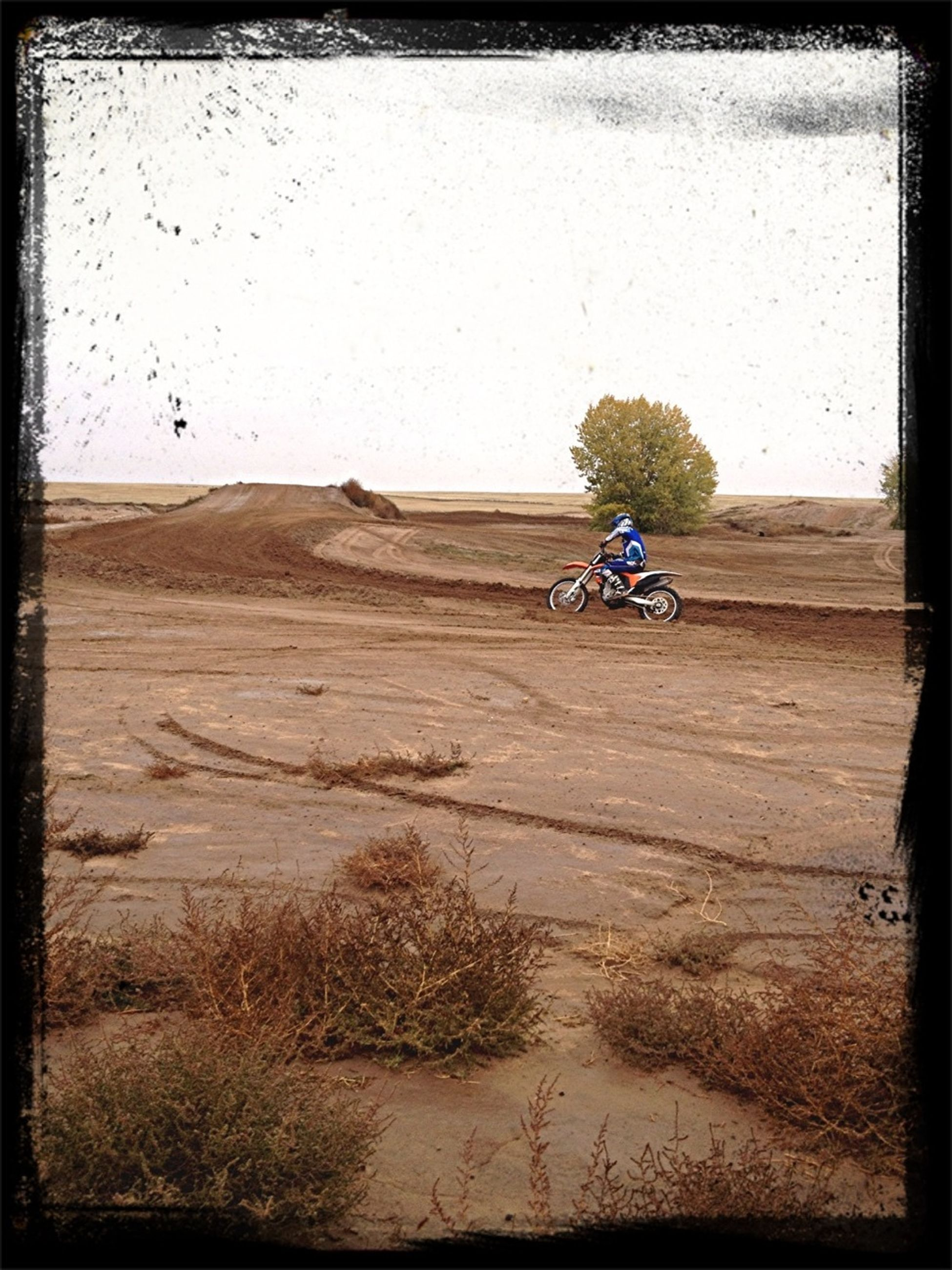 transfer print, sand, auto post production filter, bicycle, land vehicle, landscape, full length, day, leisure activity, transportation, beach, lifestyles, desert, men, field, clear sky, outdoors, sky