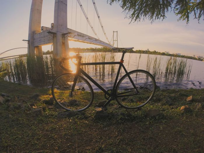Evening Ride Sunset Lake View Fixed Gear