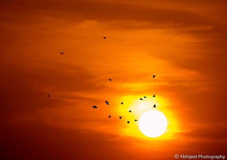Sunset Silhouettes Sunset Sillhouette Sunset #sun #clouds #skylovers #sky #nature #beautifulinnature #naturalbeauty #photography #landscape Sunsets