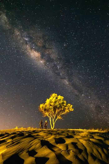 Two people under the thousand of star Sand Hill Man Yogyakarta Night Star - Space Sky Astronomy Plant Tree Space Nature Scenics - Nature Environment Beauty In Nature Galaxy Landscape Tranquility Star Land Growth Star Field Tranquil Scene Field