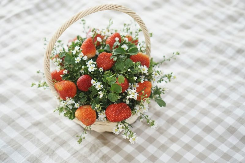 Growth Basket Flowers,Plants & Garden Cute♡ Basket Of Fruit Flower Arrangement Strawberries ♡ No People SpecialOccasion Daylight Fruit Red Healthy Eating Strawberries Flowerphotography Warm Light Cozy Strawberry Freshness Healthy Lifestyle Food And Drink Outdoors Flowers Market Lovely EyeEmNewHere