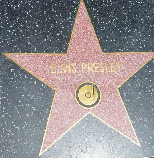 Close-up Day Elvis Presley History Music No People Outdoors Sky Walk Of Fame