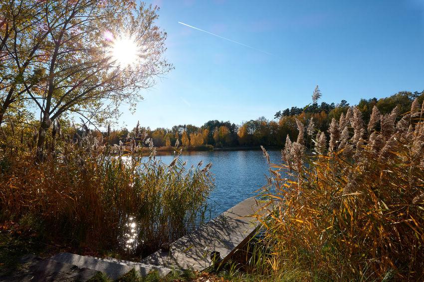Autumn in Germendorf Brandenburg