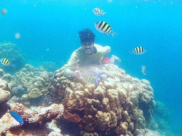 keindahan dunia bawah laut yg luar biasa indahnya Suwarnadwipa Pulauemas Ootdindo Jalan2man Traveling Padang Exploreindonesia