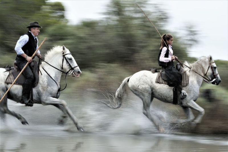 People riding horse in water