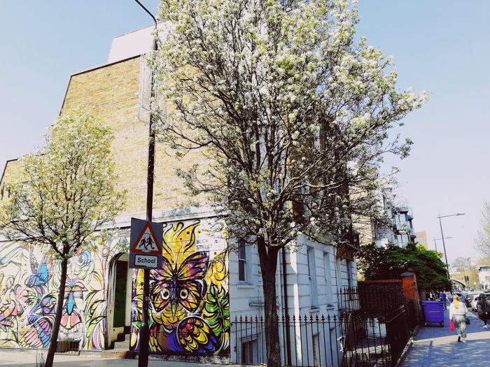 Street Spring London United Kingdom Uk Camden Town Graffiti Mural Tree Architecture Built Structure