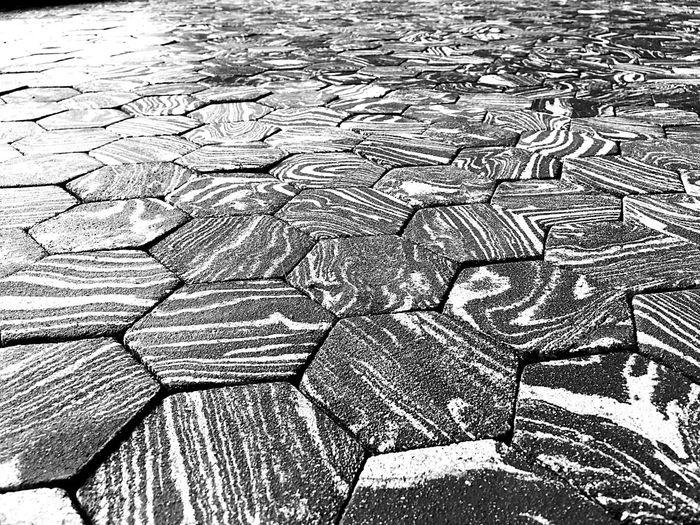 Art Contemporary Art Effet De Seuil Exposition Blackandwhite Black & White Grenoble France Rhonealpes Centre D'art Bastille Chloé Jarry Artist