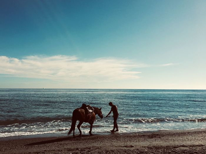 Incondicional Love 💕 Love Granada, Spain Beach Sea Water Sky Horizon Over Water Horizon Beach Land Beauty In Nature Domestic Animals Real People Horse Horseback Riding