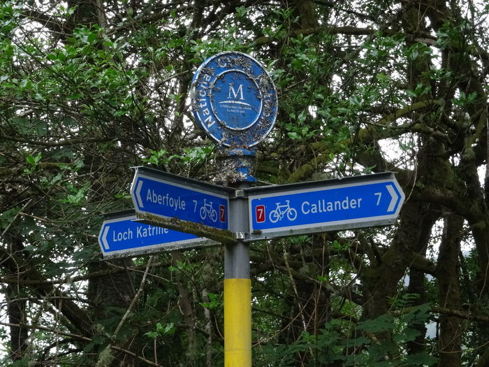 halfway Cycle Cycle Path Route 7 Scotland The Trossachs National Park Aberfoyle Callander Route Keep Going  Tree Road Sign One Way Communication Blue Street Name Sign Guidance Direction Text Arrow Symbol Directional Sign