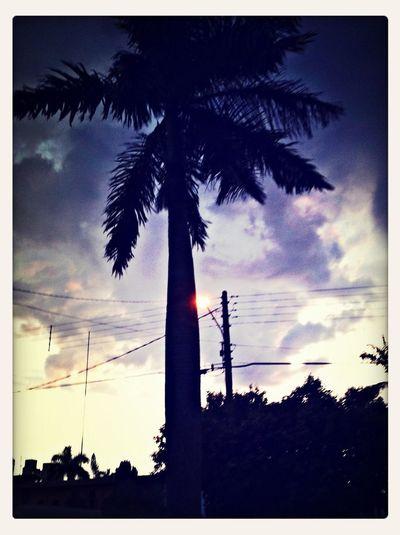 Taking Photos Sky Landscape Bluesky