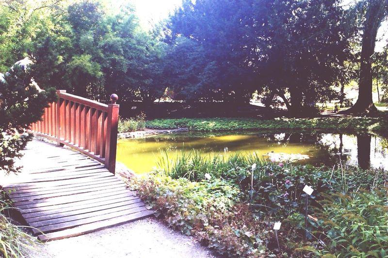 A beautiful day in the Botanical Garden of Zagreb. Croatia Travel Photography Hrvatska