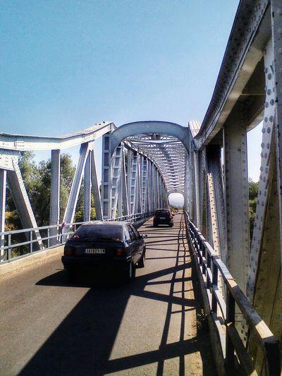 Architecture Bridge Cyclingphoto Landscape
