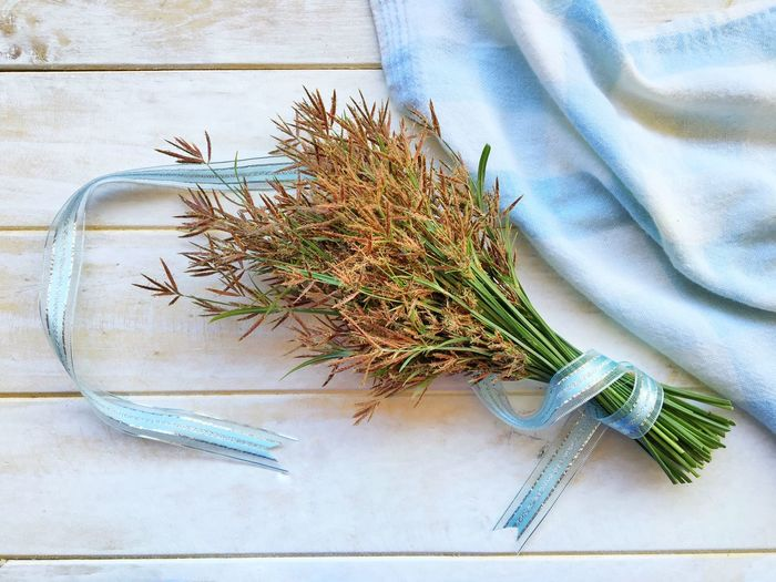 Grass flower on white wooden table. Love Garden Natural Nature Love Gift Hope Happy Concept Copy Space Background Beautiful Beauty Nature Object Color Blue Green Brown Flower Grass Plant High Angle View Nature No People Still Life Indoors  Growth Green Color Textile