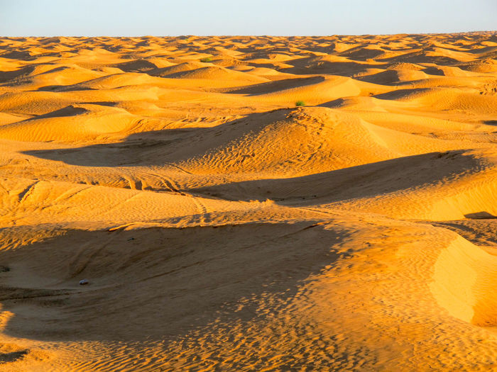 Tunisia travel holidays Landscape Land Environment Sand Scenics - Nature Desert Sand Dune Nature No People Tranquility Arid Climate Beauty In Nature Climate Non-urban Scene Tranquil Scene Day Remote Outdoors Sky Barren Rolling Landscape Semi-arid