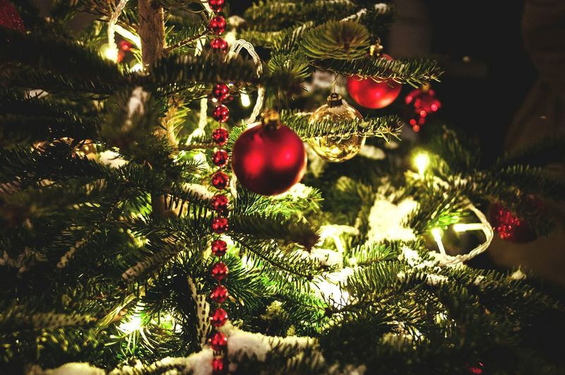 Christmas Christmas Tree Celebration Christmas Decoration Tree Christmas Ornament Christmas Lights No People Tradition Illuminated Close-up Christmas Bauble Branch Fair Night Christmas Time Christmas Lights Christmas Around The World New Year's Eve Winter Russian Tradition Russia Nightlife New Year Around The World New Year Fair