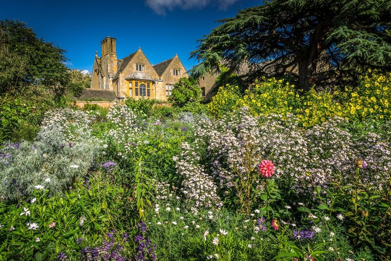 English country garden Architecture Building Exterior Built Structure Flower Tree Growth Plant Freshness Blossom In Bloom Outdoors Nature Lawn Fragility In Front Of History Day Green Color Growing Beauty In Nature