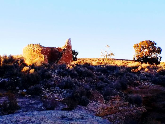 hovenweep house EyeEmNewHere Canyon Of The Ancients Hovenweepnationalmonument EyeEm Selects Sky Tree Nature Outdoors No People Day Beauty In Nature