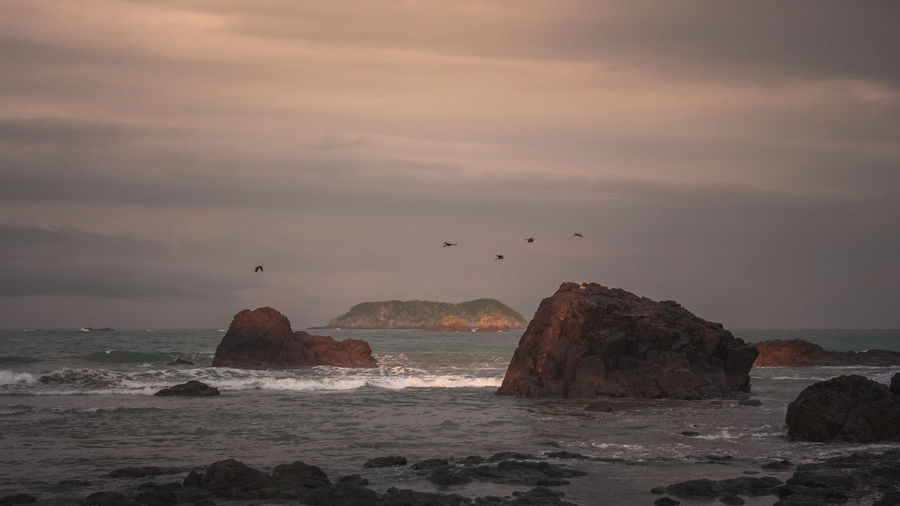 Birds flying over sea against sky at sunset