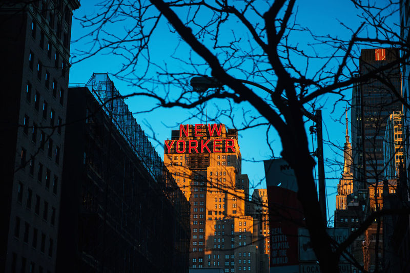 Autumn In New York City Fall In New York City Manhattan New York New York City Architecture Bare Tree Building Exterior Built Structure City Clock Communication Day Illuminated Low Angle View Modern Neon New Yorker Hotel No People Outdoors Sky Skyscraper Text Time