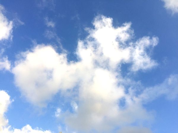Sky Low Angle View Cloud - Sky Nature Blue Backgrounds No People Day Beauty In Nature Tranquility Outdoors Scenics Sky Only