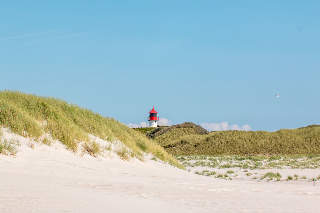 Amrum Beach Beauty In Nature Blue Clear Sky Day Grass Lighthouse Marram Grass Nature No People Outdoors Sand Sand Dune Scenics Sea Sky Tranquil Scene Tranquility Water Fresh On Market 2017