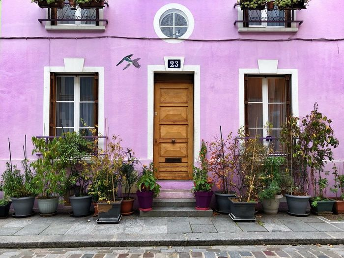 Pink Facade Rue Crémieux Streets Of Paris Building Exterior Architecture Built Structure Plant Pink Color Building Potted Plant