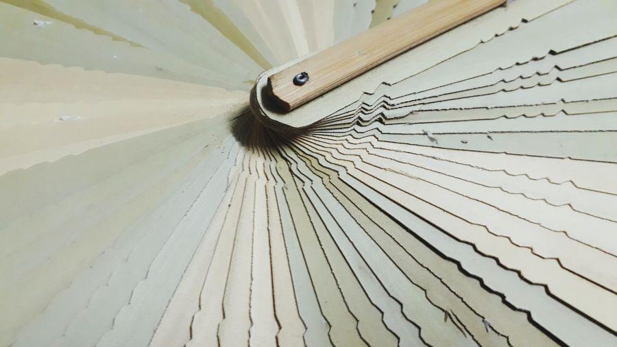 Green Fan Folding Fan Wood - Material Tree Ring
